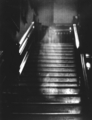 The Brown Lady of Raynham Hall - urban-legends photo