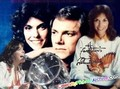 The Carpenters - the-carpenters photo