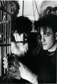 The Cure - the-cure photo