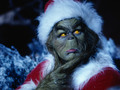 The Grinch - jim-carrey wallpaper