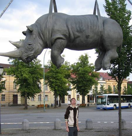The Hanging Rhino - germany Photo