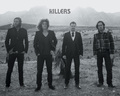 The Killers - the-killers wallpaper