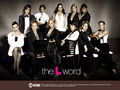 The L Word - Season 4 - the-l-word wallpaper