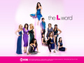 The L Word - the-l-word wallpaper