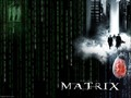 The Matrix - keanu-reeves wallpaper