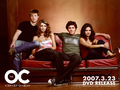 The OC - adam-brody wallpaper