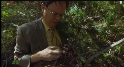 The Office- Survivorman