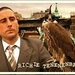 The Royal Tenenbaums - luke-wilson icon
