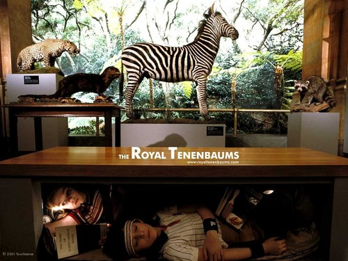The Royal Tenenbaums wallpaper called The Royal Tenenbaums