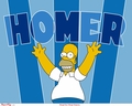 The Simpsons wallpapers - the-simpsons wallpaper