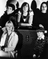 The Velvet Underground - the-velvet-underground photo