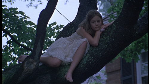 The Virgin Suicides 壁紙 titled Cecilia