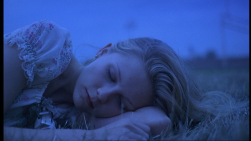 The Virgin Suicides پیپر وال entitled Lux
