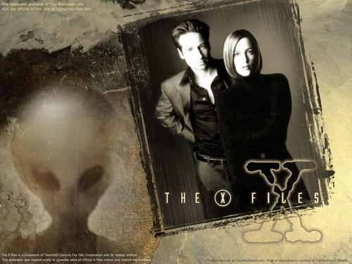 The X-Files achtergrond titled The X-Files