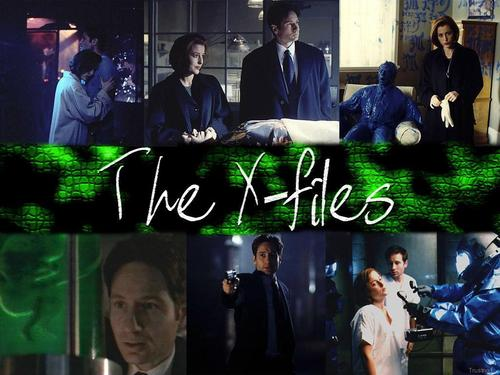 The X-Files 壁纸 titled The X-Files