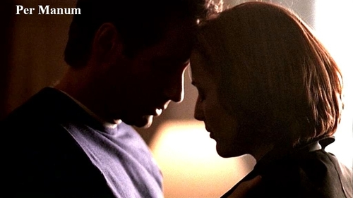 http://images.fanpop.com/images/image_uploads/The-X-Files-the-x-files-78344_500_281.jpg