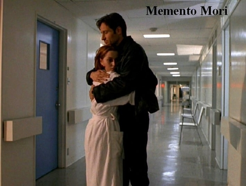 http://images.fanpop.com/images/image_uploads/The-X-Files-the-x-files-78351_500_379.jpg