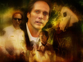 TomUnderlay - william-fichtner wallpaper