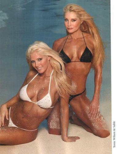 Torrie Wilson Hintergrund entitled Torrie and Sable