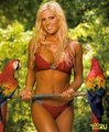 Torrie and the Birds