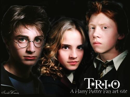 Harry, Ron and Hermione वॉलपेपर entitled Trio