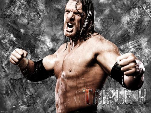 WWE kertas dinding titled Triple H