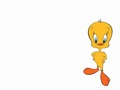 Tweety - warner-brothers-animation wallpaper