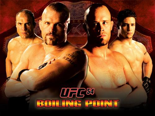 UFC fondo de pantalla