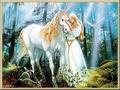 Unicorn's - fantasy photo