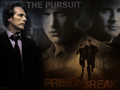 WPPursuit - william-fichtner wallpaper