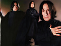 WPSeverus Snape
