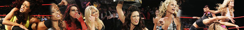 WWE Divas Banner