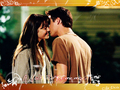 love - Walk To Remember Landon Jamie wallpaper