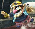 Wario - super-smash-bros-brawl photo
