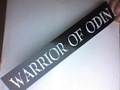 Warrior of Odin