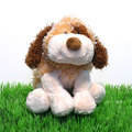 Webkinz Cheeky Dog