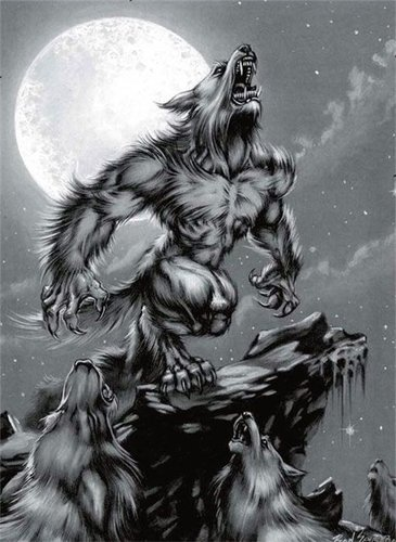 Werewolves - werewolves Fan Art