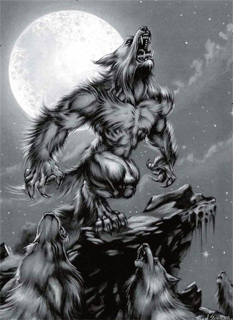 werewolves from fanpop.com