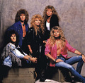 Whitesnake - whitesnake photo