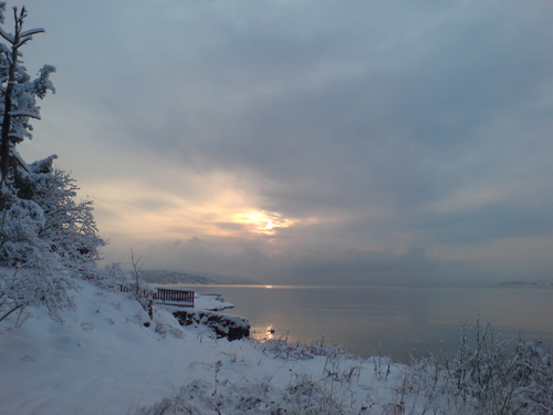 Winter at Bygdøy, Oslo