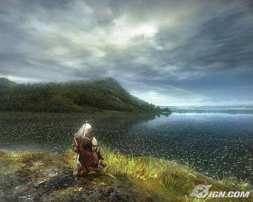 Witcher images - the-witcher Photo