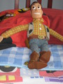 Woody! - toy-story photo