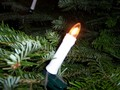 Xmas Tree Candle Lights - christmas wallpaper