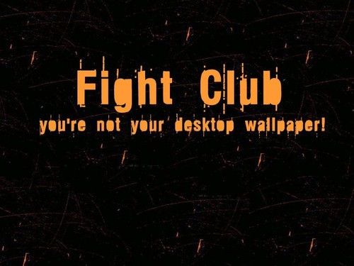 You Are Not Your Wallpaper - fight-club Wallpaper