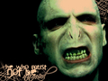 You kown hwo - death-eaters wallpaper