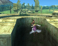 Zelda Special Moves - super-smash-bros-brawl photo