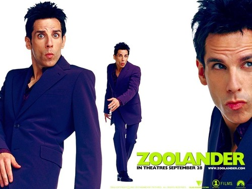 Ben Stiller wallpaper called Zoolander