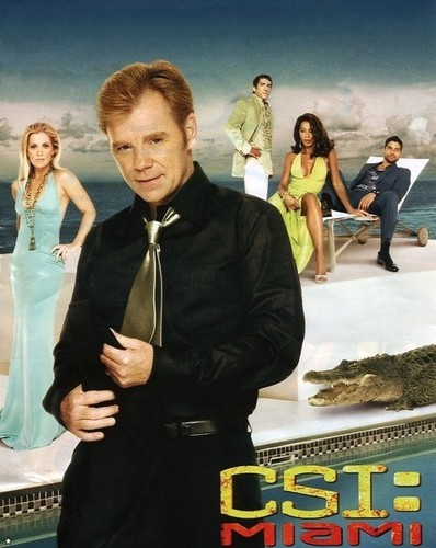 CSI: Miami wallpaper entitled csi miami