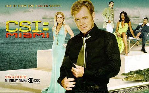 csi miami team