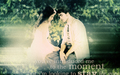 twilight-series - edward and bella wallpaper